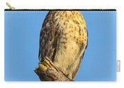 Stately Red-shouldered Hawk Carry-all Pouch
