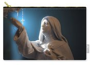 Statue 22 Carry-all Pouch by Thomas Woolworth