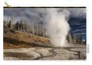 Steaming Streams Carry-all Pouch