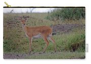 Steenbok Antelope Carry-all Pouch