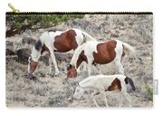 Steens Wild Paints Carry-all Pouch