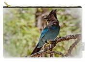 Stellar Jay Carry-all Pouch by Bill Gallagher