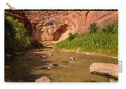 Stevens Arch - Escalante River - Utah Carry-all Pouch