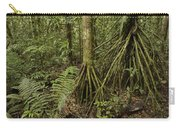 Stilt Roots In The Rainforest Ecuador Carry-all Pouch