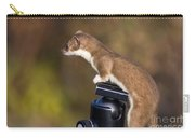 Stoat On Tripod Carry-all Pouch