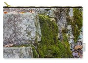 Stone And Moss Carry-all Pouch