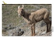 Stone Lamb Carry-all Pouch