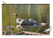 Stone Reflections Carry-all Pouch