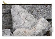 Stone Tooth Carry-all Pouch