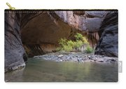 Stones Underwater, Zion National Park Carry-all Pouch