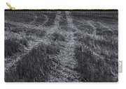 Storm Tracks Carry-all Pouch