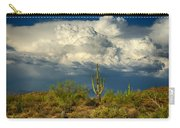 Stormy Desert Skies  Carry-all Pouch