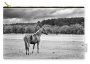 Stormy Pasture Carry-all Pouch