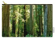 Stout Grove Coastal Redwoods Carry-all Pouch
