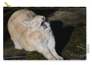 Stretching Rabbit Carry-all Pouch
