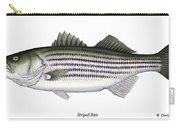 Striped Bass Carry-all Pouch by Charles Harden