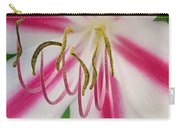 Striped Crinium Carry-all Pouch