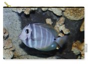 Striped Fish Carry-all Pouch