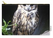 Striped Owl Carry-all Pouch