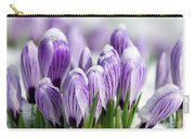 Striped Purple Crocuses In The Snow Carry-all Pouch