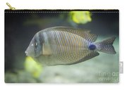 Striped Tropical Fish Desjardini Tang Carry-all Pouch