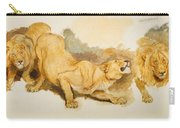 Study For Daniel In The Lions Den Carry-all Pouch