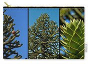 Study Of The Monkey Puzzle Tree Carry-all Pouch