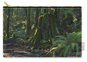Stump And Fern Carry-all Pouch