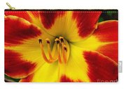 Stunning Daylily  Carry-all Pouch
