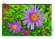 Subalpine Daisy By Vidae Falls In Crater Lake National Park-oregon  Carry-all Pouch