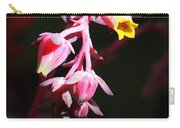Succulent 1 Carry-all Pouch