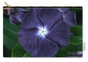 Sugar Coated Periwinkle Carry-all Pouch