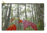 Sugar Maple In Old-growth Canadian Carry-all Pouch