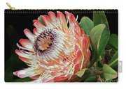 Sugarbush And Bees Carry-all Pouch