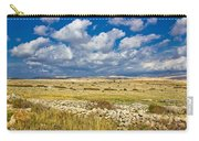 Summer Landscape Of Pag Island Carry-all Pouch