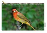 Summer Tanager Changing Color Carry-all Pouch