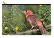 Summer Tanager Piranga Rubra Carry-all Pouch