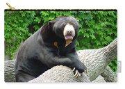 Sun Bear - 09515-1 Carry-all Pouch