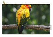 Sun Conure Carry-all Pouch