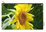 Sun Dancer  Carry-all Pouch