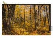 Sun Dappled Autumn Forest  Carry-all Pouch