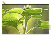 Sun Drenched Sunflower With Bible Verse Carry-all Pouch by Debbie Portwood