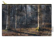 Sun In The Forest Carry-all Pouch