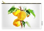 Sun Kissed Apricots Carry-all Pouch