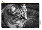 Sun Kissed Kitty Carry-all Pouch