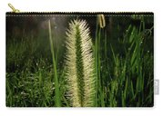 Sun-lite Grass Seed Carry-all Pouch