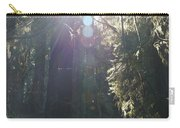 Sun Penetrates The Redwood Forest Carry-all Pouch