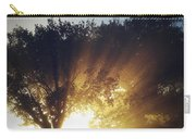 Sun Rays Carry-all Pouch by Les Cunliffe