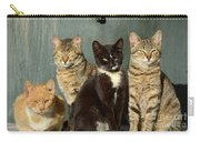 Sunbathing Cats Carry-all Pouch