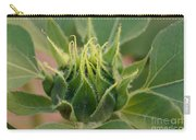 Sunflower Pod Carry-all Pouch by Kerri Mortenson